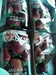 イチゴのお土産